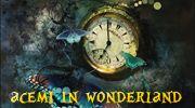 acemi in wonderland